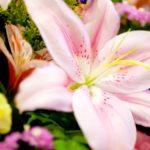 葬儀参列時のマナー:準備&覚えておくと助かる挨拶の言葉5つを紹介!
